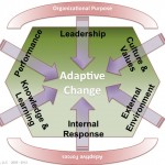 Embedding Adaptive Change