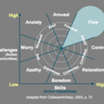 Becoming a Peak Performing Leader Through Flow